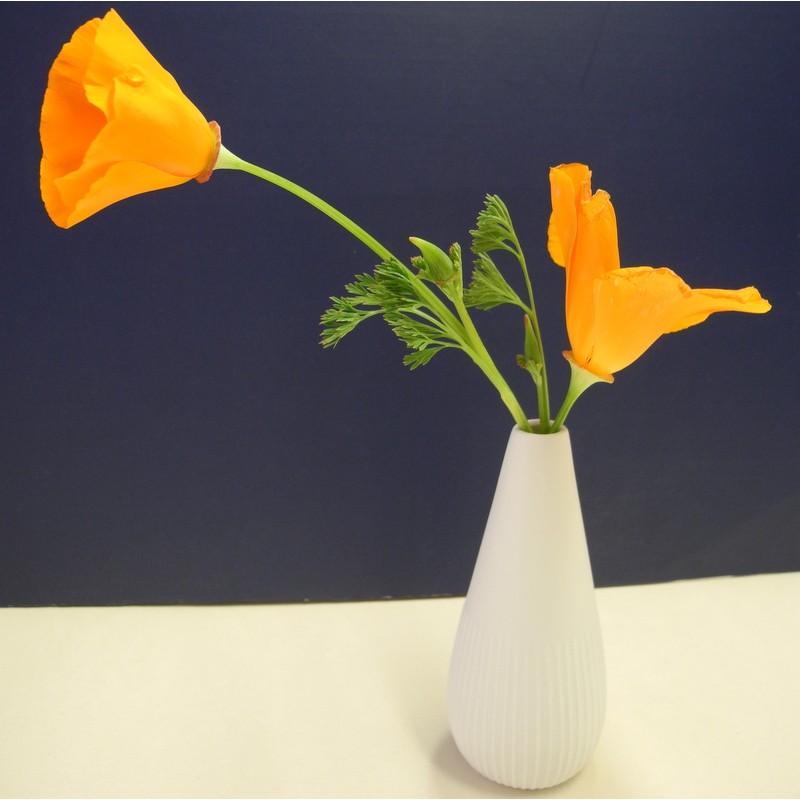 Vase blanc relief lignes...