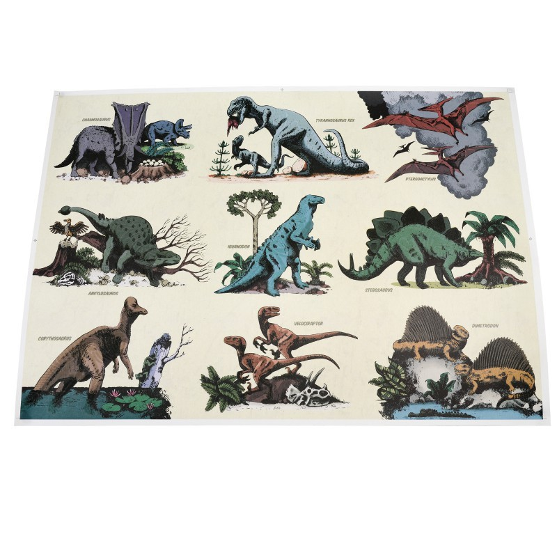 Poster Dinosaures...