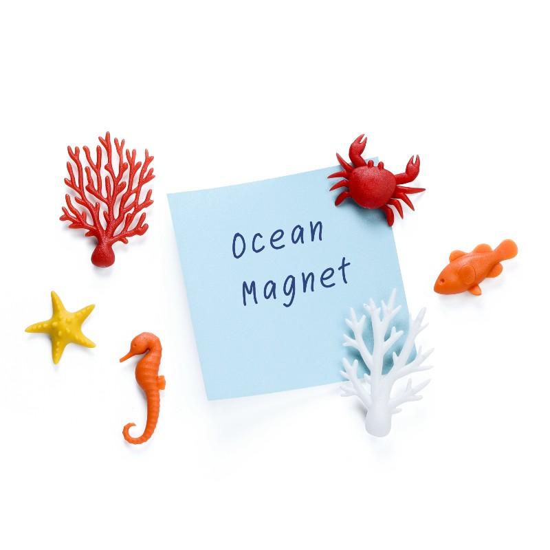 Lot de 6 magnets Océans